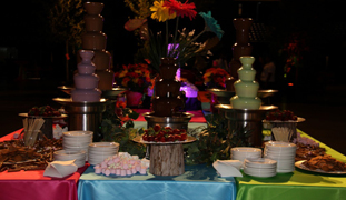 Houston Chocolate Fountains | Chocolate Shots have arrived!